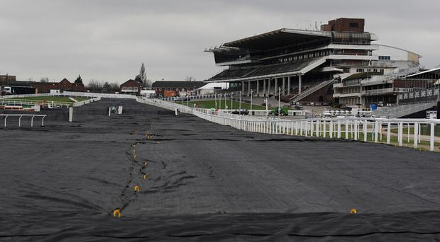 Frost covers in place on Cheltenham racecourse