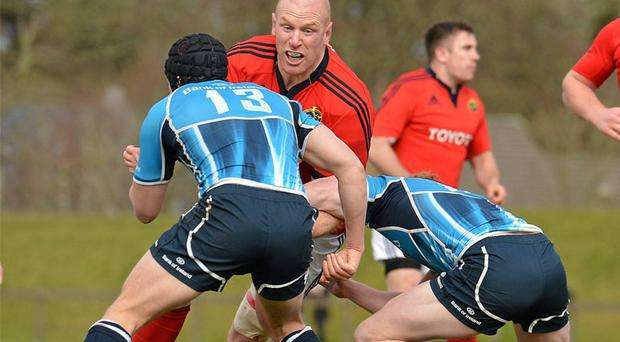 Paul O'Connell on a typically rampaging run