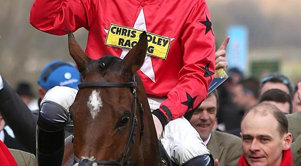 The New One ridden by Sam Twiston-Davies who celebrates their victory Neptune Investment Management Novices' Hurdle during Ladies Day at the 2013 Cheltenham Festival at Cheltenham