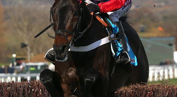 Sprinter Sacre ridden by Barry Geraghty jumps the last on their way to victory in the Sportingbet Queen Mother Champion Chase during Ladies Day at the 2013 Cheltenham Festival