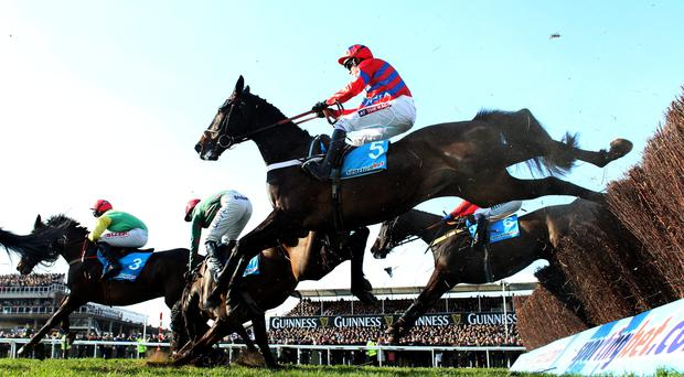 Sprinter Sacre ridden by Barry Gedraghty goes on to win the Sportingbet Queen Mother Champion Chase during Ladies Day at the 2013 Cheltenham Festival