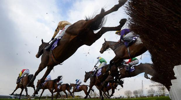 This afternoon's meeting at the Cheltenham Festival has survived an early-morning inspection