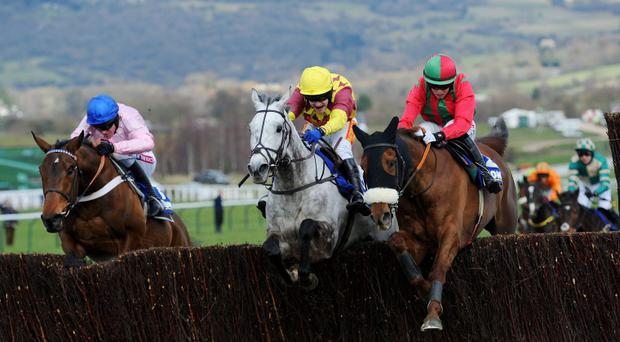 Benefficient ridden by Bryan Cooper (right) jumps the last fence to win the Jewson Novices' Steeple Chase during St Patrick's Thursday at the 2013 Cheltenham Festival at Cheltenham