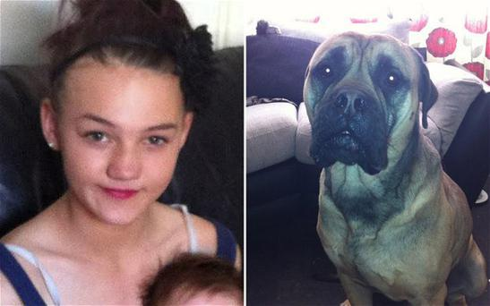 Jade Anderson was attacked by five dogs. One of Beverley Concannon's dogs Neo, the bull mastiff