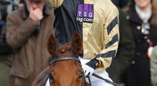 Patrick Mullins celebrates on Back in Focus after winning the John Oaksey National Hunt Chase during Ladies Day at the 2013 Cheltenham Festival at Cheltenham