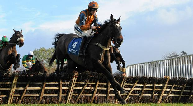 Quietly Fancied, here under Ruby Walsh, leads the field on his way to victory in a handicap hurdle at Clonmel last November, but it will be over the larger obstacles in Monday's Irish Grand National that Oliver McKiernan's charge will be hoping to score