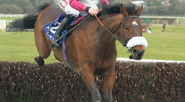 Dedigout and Davy Russell can follow up last month's Naas success by landing tomorrow's featured Power's Gold Cup