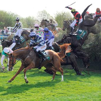 OBSTACLE COURSE: Runners and riders part company at the notorious Becher's Brook fence at Aintree which will be jumped twice next Saturday during the 166th running of the world's greatest steeplechase, the Grand National