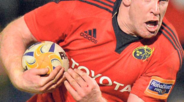 Paul O'Connell is a reminder that, at their best, Munster did not make mistakes under strain