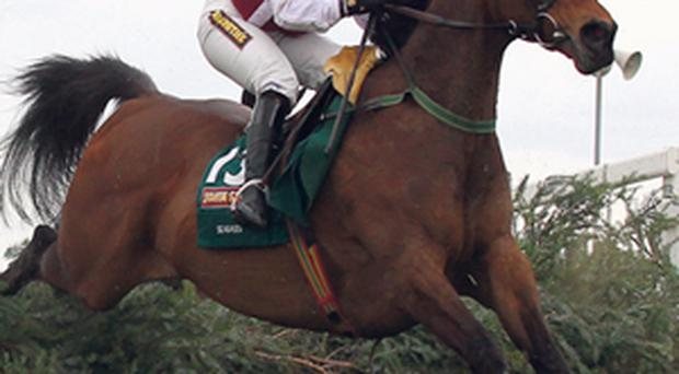 Katie Walsh on Seabass in last year's National: 'When I think of myself, it's as a successful amateur and a successful jockey, but not as a successful female'