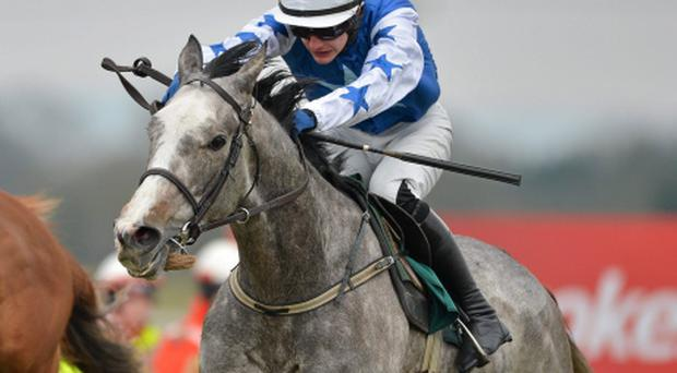 Pique Sous, with Paul Townend up, on the way to winning at this year's Fairyhouse Easter Festival. Picture: Barry Cregg/Sportsfile.