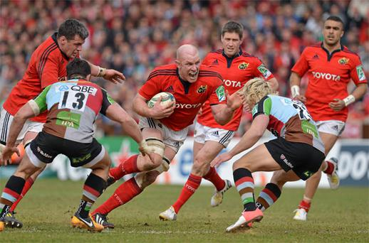 Paul O'Connell takes on the Harlequins defence