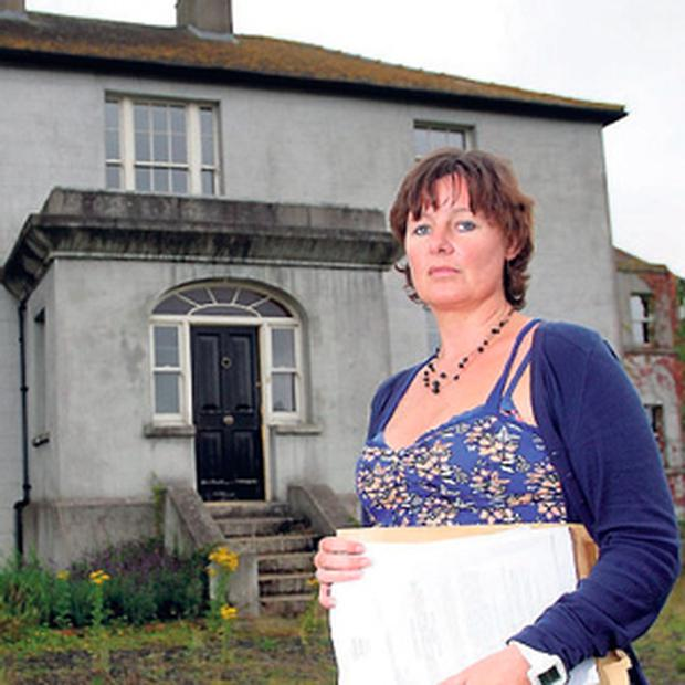 FOR SALE: Jillian Godsil in front of Raheengraney House, which she bought for over €1m