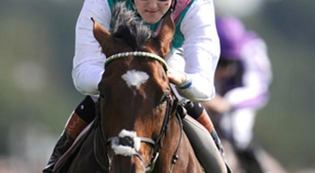 Tom Queally riding Frankel win The Juddmonte International Stakes at York racecourse last year