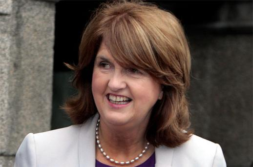 Minister Joan Burton: backed opt-out scheme
