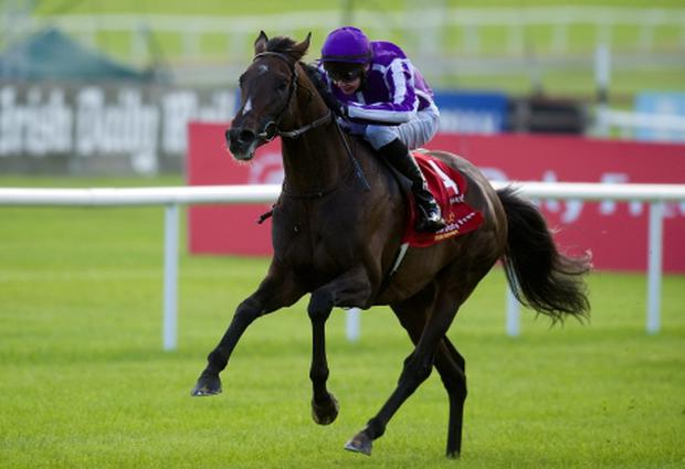 Curragh Races...KILDARE, IRELAND - JUNE 30: Joseph O'Brien riding Camelot win The Dubai Duty Free Irish Derby at Curragh racecourse on June 30, 2012 in Kildare, Ireland. (Photo by Alan Crowhurst/Getty Images)...S