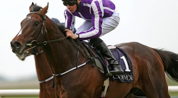 Camelot ridden Joseph O'Brien goes on to win the High Chaparral European Breeders Fund Mooresbridge Stakes. Photo: PA