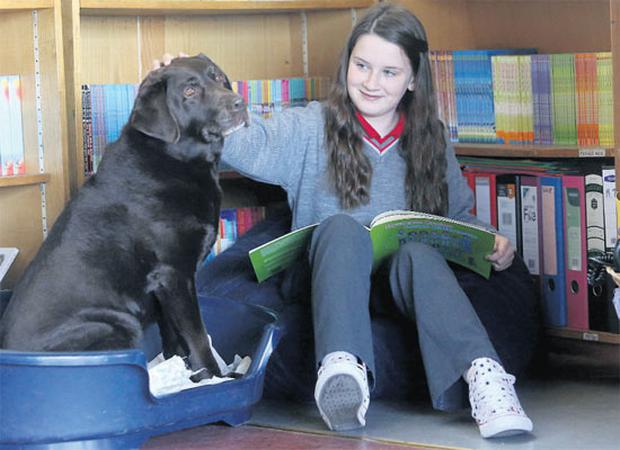 Ennis NS pupil Katie Clohessy with Marty the dog. BRIAN ARTHUR