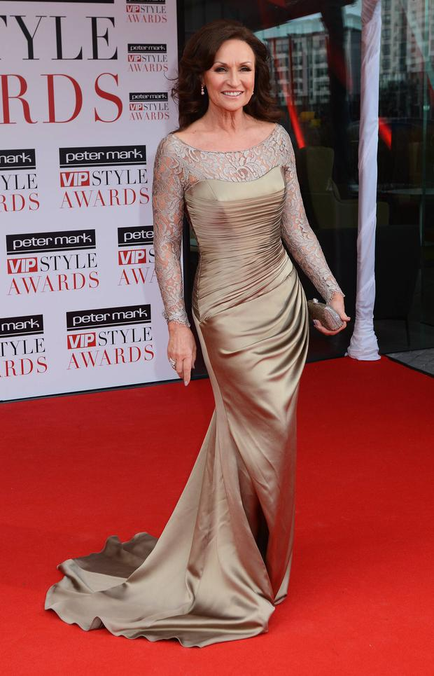 Style Wars: Celia Holman Lee, pictured at the Peter Mark VIP Style Awards 2013, is expected to be in the running for Limerick award.