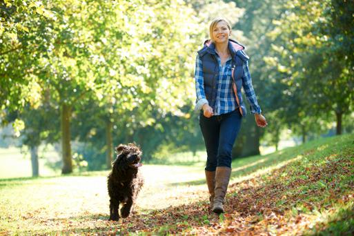 The humble walk is a simple but effective way of losing some weight. Thinkstock Images