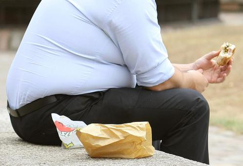 Scientists saw the trend in mice whose fathers had grown obese after being fed a high fat diet.