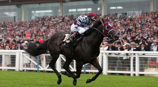 No Nay Never ridden by jockey Joel Rosario wins the Norfolk Stakes