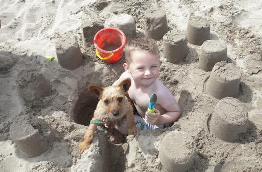 Dylan Hyland (6) from Jobstown, Tallaght & Minnie the dog at Portmarnock Beach today.