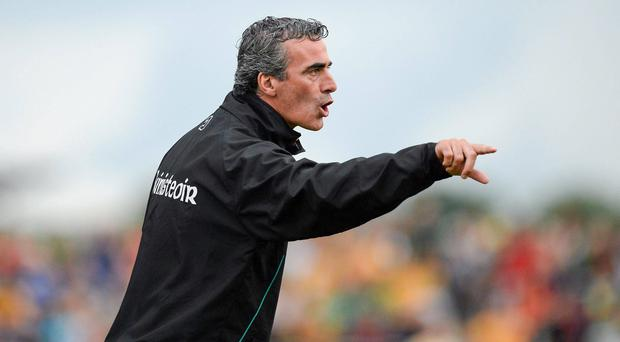 Donegal manager Jim McGuinness shouts out the orders today