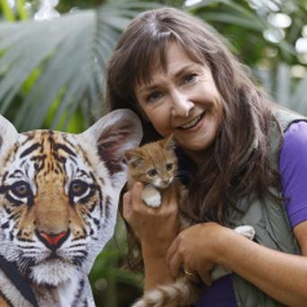 Pauline McLynn also admits to being a bit of a crazy cat lady