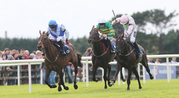 Que Pasa ridden by Davy Condon wins the The Topaz Novice Hurdle during day two of the 2013 Galway Summer Festival at Galway Racecourse, Ballybrit, Ireland