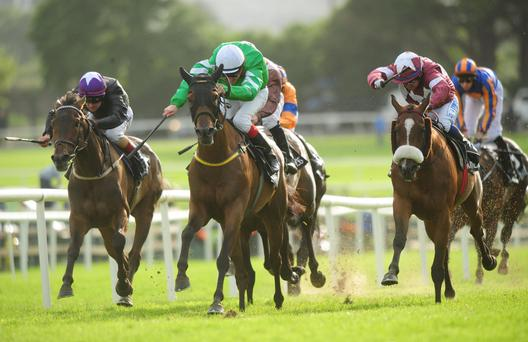 Curley Bill and Fran Berry (Green) on their way to winning the Guinness Handicap.