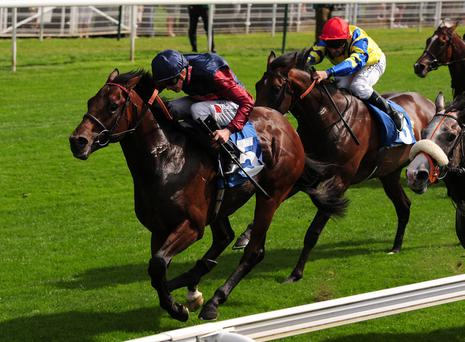 Treaty of Paris ridden by James Doyle wins the Pinsent Masons LLP Acomb Stakes during day one of the 2013 Yorkshire Ebor Festival at York Racecourse