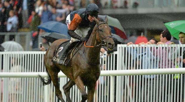 Rebel Fitz, with Barry Geraghty in the saddle