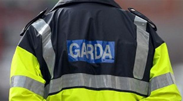 A large number of gardai were drafted in to deal with the disturbance