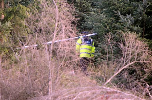 Gardai pictured at the scene where Human Skeletal Remains were found in Wooded lands off THe Killakee Road