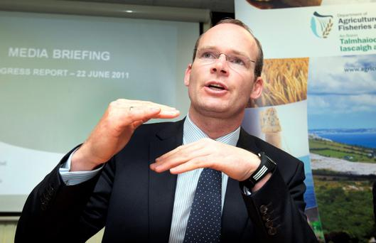 Minister Simon Coveney: The Irish Independent got his views on the big issues that will be on ploughing punters' minds during the festival