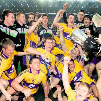 HEROES: Clare celebrate their victory. Photo: David Conachy