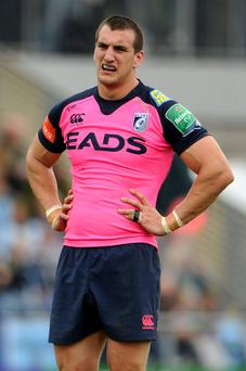 Cardiff Blues Flanker Sam Warburton - his contract is up at the end of the season