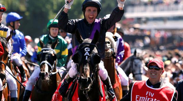 Jockey Damien Oliver, sitting atop race favourite Fiorente celebrates after winning the A$6 million Melbourne Cup at Flemington Racecourse in Melbourne)