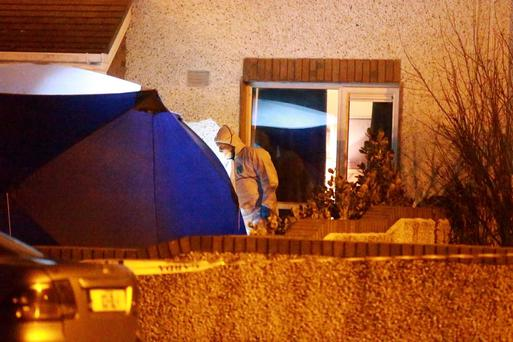 Gardai investigate the fatal stabbing of a man in his 50s at a house in Mourne Park, Skerries.