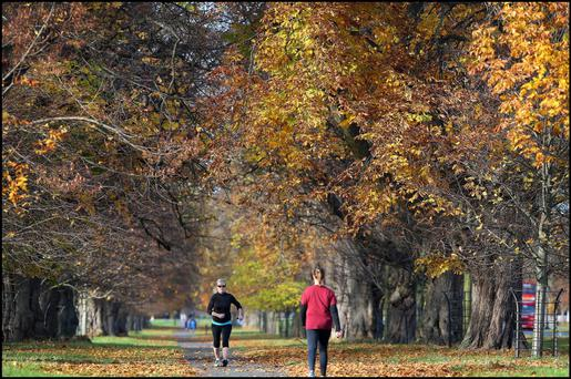People enjoying the crisp weather in the Phoenix Park, Dublin last month. (Pic Steve Humphreys)