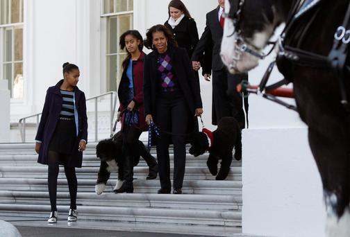 U.S. first lady Michelle Obama (front R) and her daughters Sasha (L) and Malia welcome the official White House Christmas tree at the North Portico of the White House in Washington, November 29, 2013