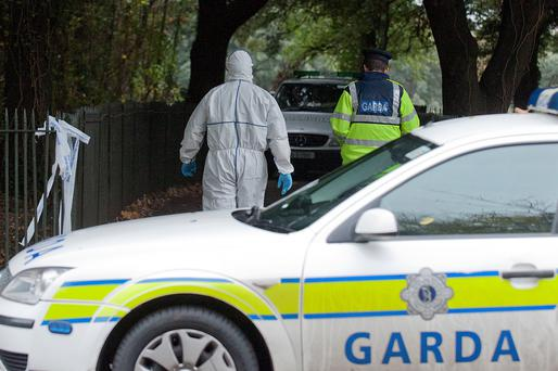 Gardai at the scene of the discovery of the Gerard Donnelly's near Wellington Road, Phoenix Park, in November 2013