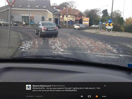 The scene in Waterford today after the fish spilled on to the road