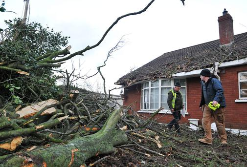 A tree falls on a house in Kilcurry in Co Louth. Photo: Ciara Wilkinson.