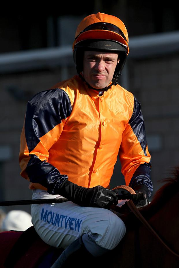 info for 76751 de466 Murphy gets nine-day ban for skirmish - Independent.ie