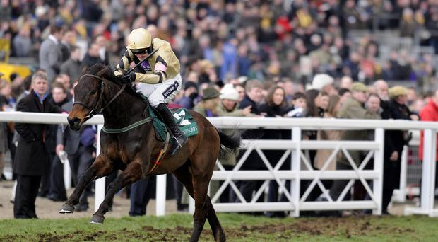 Ruby Walsh riding Briar Hill winning The Westherbys Champion Bumper during Ladies Day at the 2013 Cheltenham