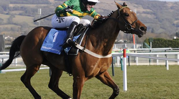 Tony McCoy riding Binocular