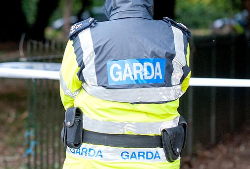 A garda and a female driver were injured in a two-vehicle collision last night
