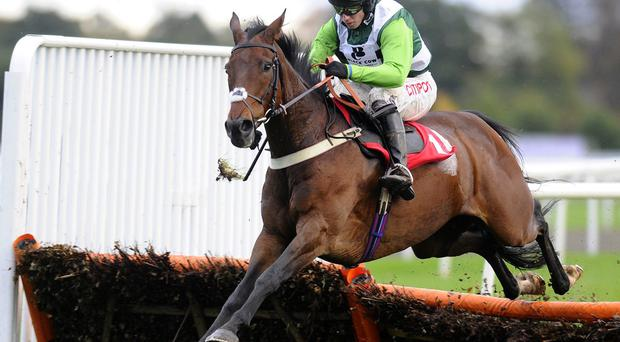 Noel Fehily riding Rock On Ruby